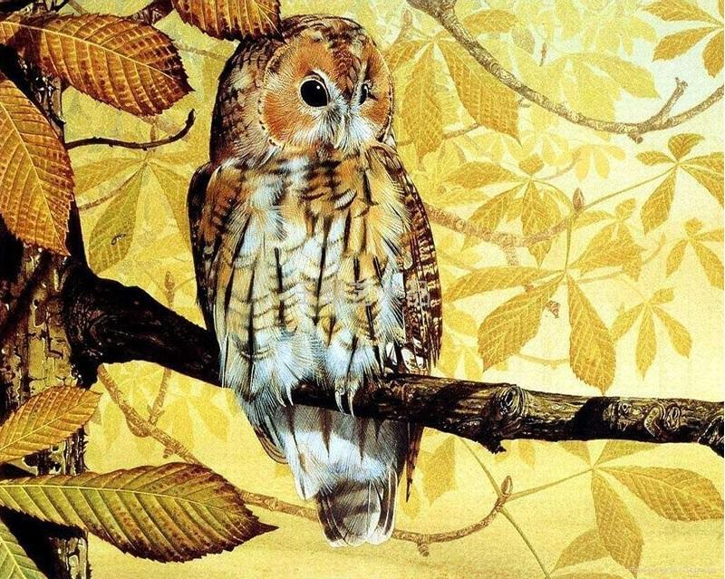 Animals Vintage Painting - DIY Paint By Numbers - Numeral Paint