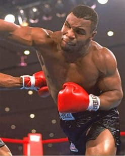 Mike Tyson Paint by numbers