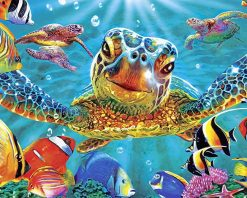 Colorful Milton Turtle adult paint by numbers