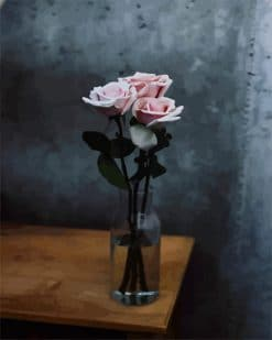 Baby Pink Rose Flower - Paint By Numbers