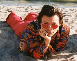 Harry Styles Malibou beach adult paint by number