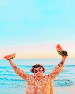 Harry Styles Watermelon Sugar Paint by number