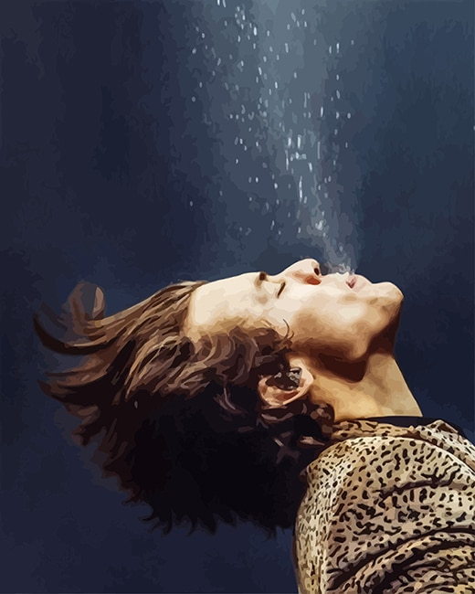 Harry styles drowning adult paint by number