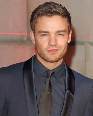 Liam Payne Singer adult paint by numbers