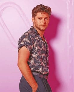 Handsome Niall Horan Paint by numbers