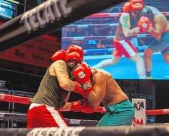 Amateur Boxing paint by number
