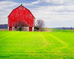 Barn Green Field paint by number