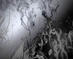 Black And White Smoke paint by number