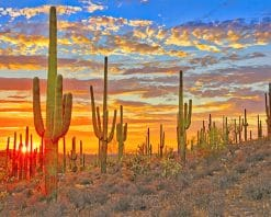 Cactus Arizona Desert paint by number
