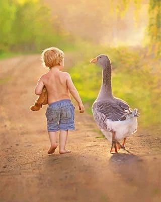 Little Boy With His Bird Friend paint By Numbers