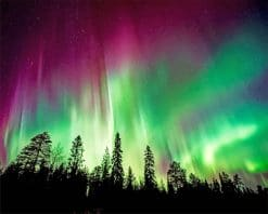 Aurora borealis trees silhouette adult paint by numbers