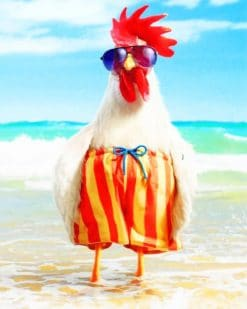 Funny Rooster adult paint by numbers