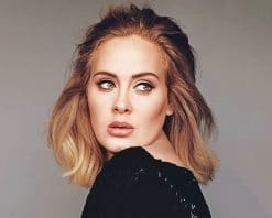 Gorgeous Adele Wearing Black adult paint by numbers