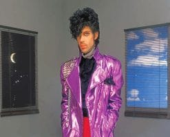Prince before the rain adult paint by numbers