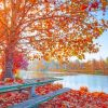 Amazing Autumn Nature paint by number