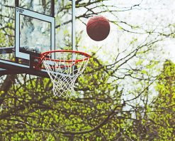 Basketball Into the Hoop paint by number