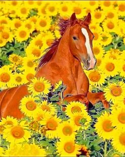 Cute Horse Sunflowers paint by number