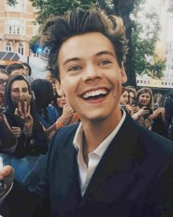 Harry Styles Smile paint by numbers