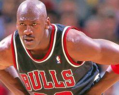 Michael Jordan Bulls paint by numbers