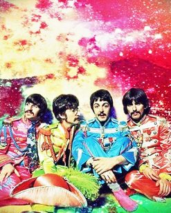 the colorful beatles adult paint by numbers