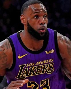 Lebron James Player paint by numbers
