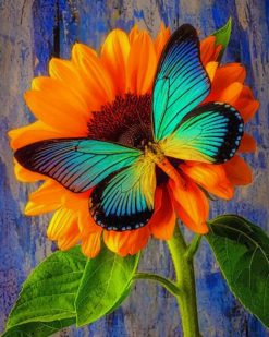 Big Blue Butterfly On Sunflower paint by numbers