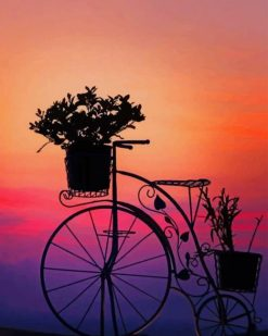Silhouette Of Bike With Flowers paint by numbers