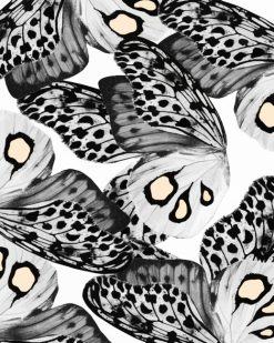 Black And White Butterfly paint by numbers