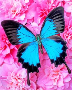 Blue Butterfly On Pink Calmila Flowers paint by numbers