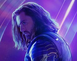Bucky Barnes Winter Soldier paint by number