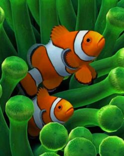Clownfish paint by numbers