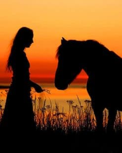 Girl With Her Horse Silhouette paint by numbers