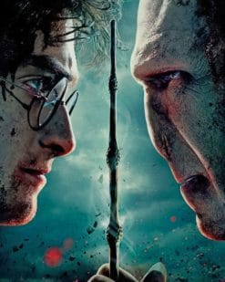 Harry Potter And Lord Voldemort paint by numbers