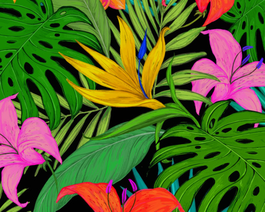 Pattern Tropical Flowers paint by number