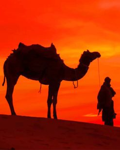Silhouette Of Desert Camel Ride paint by numbers