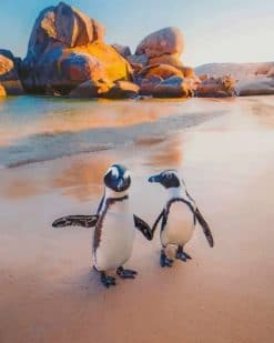 Penguins On The Beach paint by nnumbers