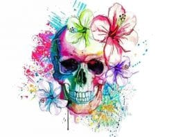 Colorful Skull paint by numbers