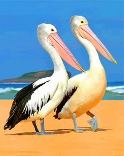 pelicans paint by numbers